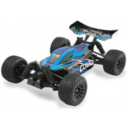 FTX Colt 1/18 Brushed Mini 4wd Buggy RTR Blu e Nera